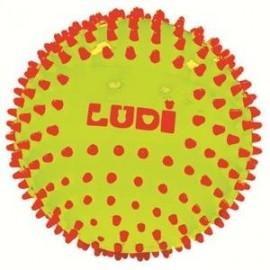 Balle sensorielle bicolore Ludi